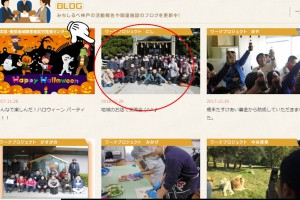 ブログ掲載お知らせjpg