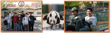 まや 王子動物園①