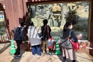 WPみかげ Blog photo 202103031-11